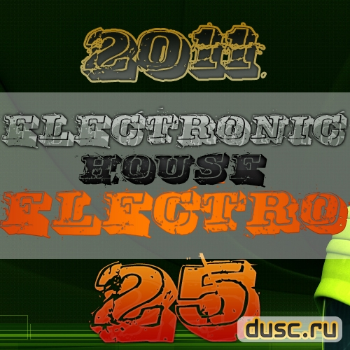 Electronic house electro vol.25 (2011)