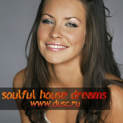 Soulful house dreams vol.5 (2011)