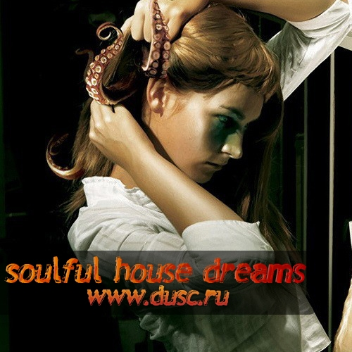 Soulful house dreams vol.6 (2011)
