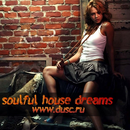 Soulful house dreams vol.8 (2011)