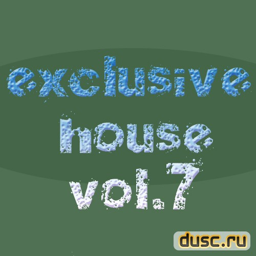 Exclusive house vol.7 (2012)