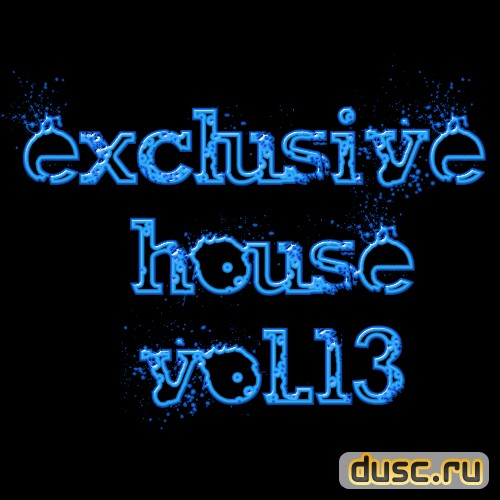 Exclusive house vol.13 (2012)