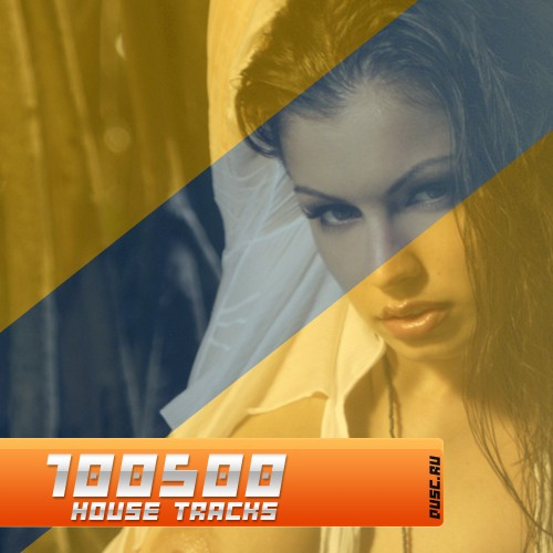 100500 house tracks vol.11 (2012)