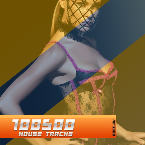 100500 house tracks vol.15 (2012)
