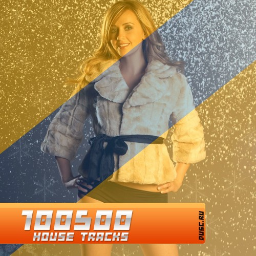 100500 house tracks vol.21 (2012)