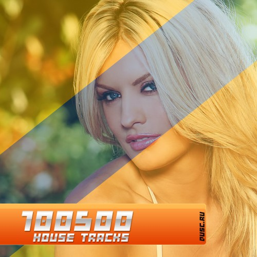 100500 house tracks vol.23 (2012)