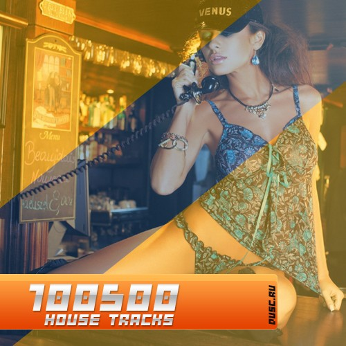 100500 house tracks vol.24 (2012)