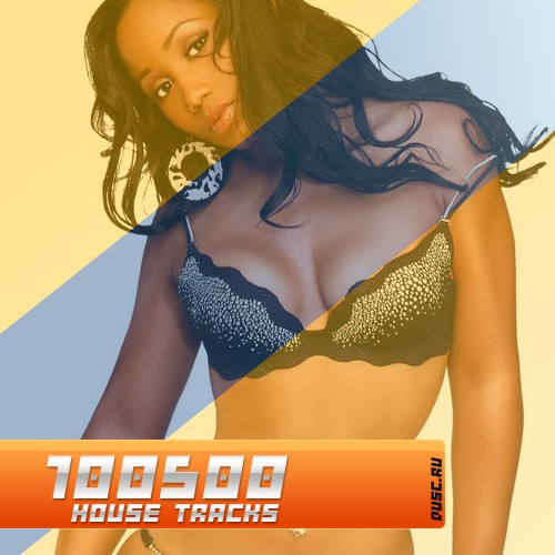 100500 house tracks vol.25 (2012)