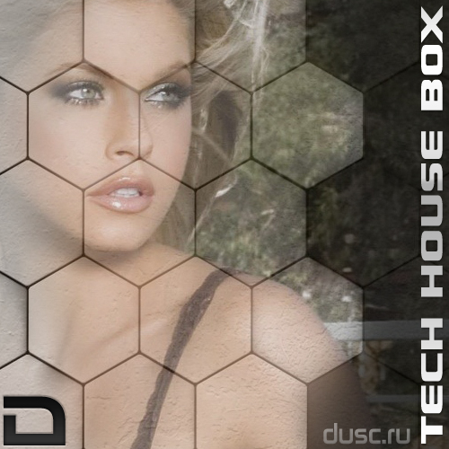 Tech house box vol.4 (2012)