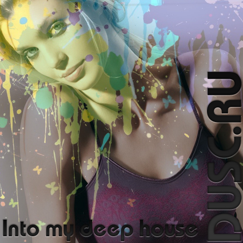 Into my deep house vol.17 (2012)