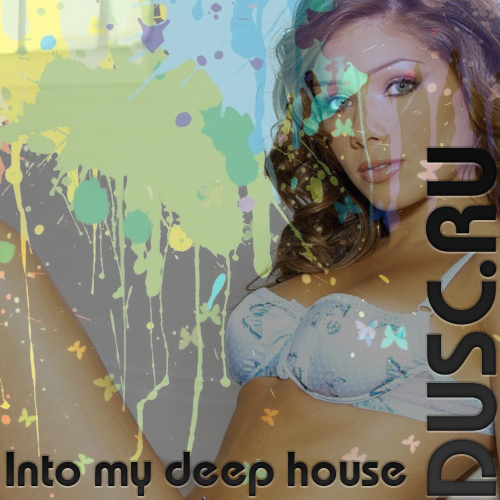 Into my deep house vol.2 (2012)