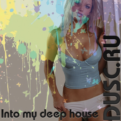 Into my deep house vol.35 (2013)