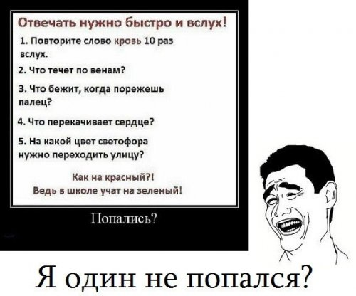 приколы дагестана: