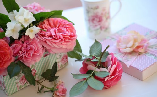 Прикольные красивые фото цветы