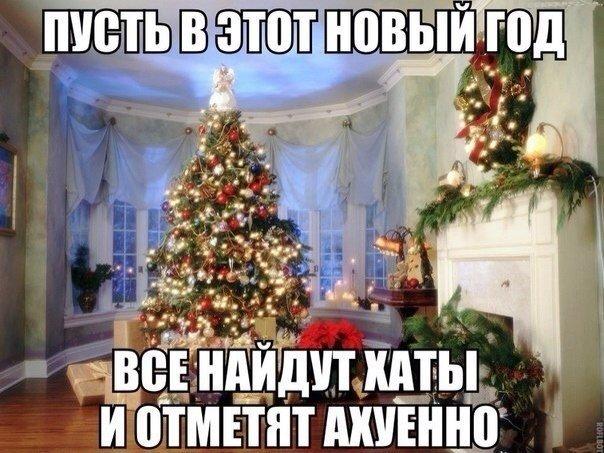 Зимние новогодние фото приколы 2014